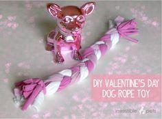 DIY Valentines Day Dog Toy