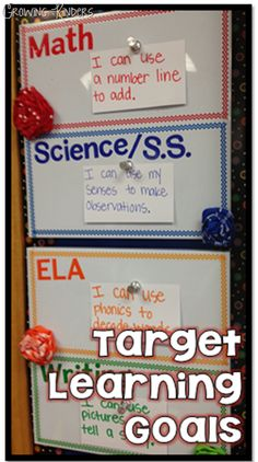 Target Learning Goals and