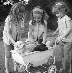 enfance douce