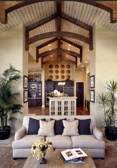 Living Room / Tall, Vaulted ceilings
