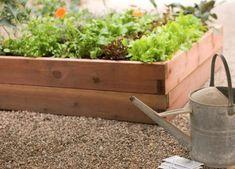 Raised Garden Bed Round-Up Gardenista