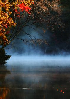 Autumn Pond mist reflections.
