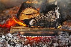 http://www.cottagecountry.com/info/make-your-own-fire-starters/ Make Your Own Fire Starters