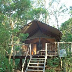 cabin, buy a house, glamp, tent camping, tree houses, outdoor, camping luxury, place, dream houses