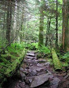 thanksappalachian trail