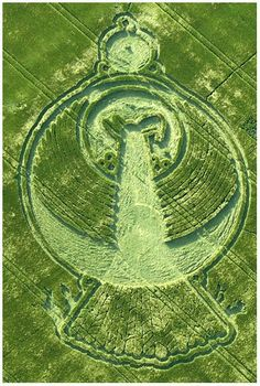 CROP CIRCLES - THE FEDERATION OF LIGHT