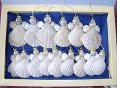 40 Sea Shell Art and...