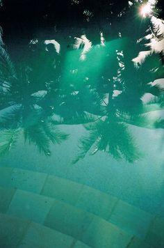Tropical Island pool