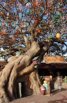 Pooh's Home in Magic Kingdom Park