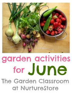 Garden plans for each month of the year