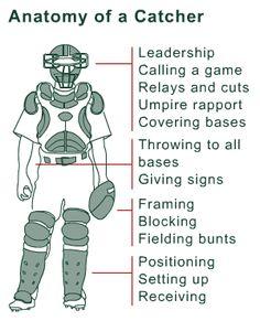 Anatomy of a Catcher