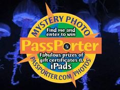 Find the mystery photo somewhere in the PassPorter Photo Archive for a chance to win an iPad or gift certificates! Click for a closer view.. TIP: Find, save, and share this photo for a chance to win an iPad or gift certificates from PassPorter!
