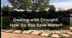How Do You Save Water? « by The Partners Trust but The House Agents info highlighted!