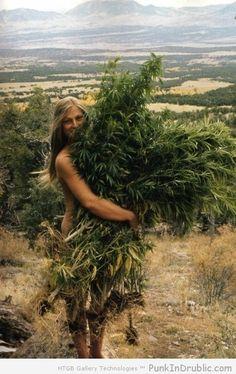 ganja-girls who smoke weed harvest herb bud http://hdweedwallpapers.com/ #weedplant #weed
