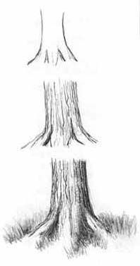 How to Draw - Tutorial: Drawing a Tree Trunk for Comic / Manga Panel Design Reference drawings tutorial, pencil drawing tutorial, tree sketch, pencil drawings trees, tree trunks, drawing tutorial trees, how to draw tree, drawings to paint, drawing trees tutorial
