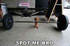 spot me bro