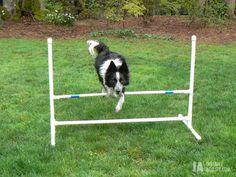 Build your own Dog agility jump