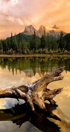 Three Sisters sunset in the Bow Flats Natural Area near Canmore, Alberta, Canada • photo: Michael James.