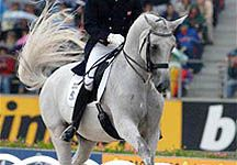 Google Image Result for http://www.horseandhound.co.uk/imageBank/b/Blue-Hors-Matine.jpg