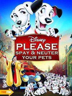 Please Spay & Neuter Your Pets