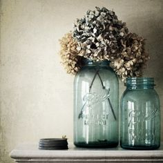 Two favorites...blue Ball jars and hydrangeas