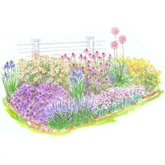 Ultraeasy Perennial Garden by BH  Gardens Specially designed for beginning or time-constrained gardeners, this small garden plan features some of the best low-care perennials you can grow. Garden size: 14 by 6 feet