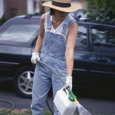 Timing and type of fertilizer for oak trees. Fertilizing the lawn will also benefit trees.