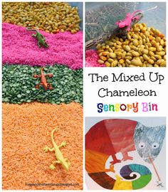 sensory books, activities for kids, the mixed up chameleon