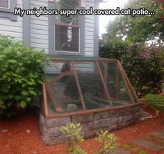 Cat patio without appearing to have gone 100% full crazy cat lady. This is my favorite so far.