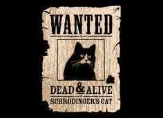 Schrodinger's Cat (XL)