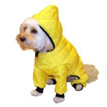 Pedigree Perfection RN101Q-16-YEL Weather Master Quilted Rain Suit for Your Dog, 16-Size, Yellow