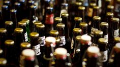 How to Use Beer to Get Rid of Pests - roaches, mice, earwigs, slugs, fruit flies - wow