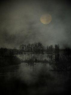 landscap dark, dark forest, forest woodland, art dark, fairi, dark art, bad dream, dark water, art anim