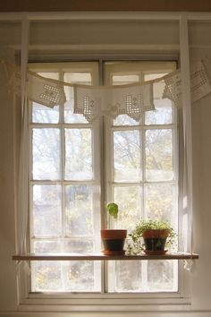 shelf diy, apart plant, hanging plants, window shelv, kitchen, hang window, hang shelf, plant storag, window shelf