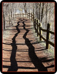 crooked fence #Shadows