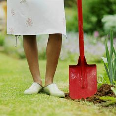 Money Saving Gardening Tips