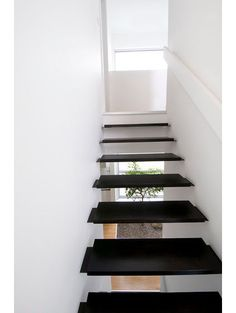contemporary staircase by LineBox Studio close staircas, float staircas, green walls, studios, contemporari staircas, staircas design, beauti staircas, staircase design, linebox studio