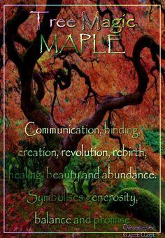 MAPLE Communication, binding, transmutations, creation, revolution, rebirth, healing, beauty, art, and abundance. Symbolises generosity, balance and promise