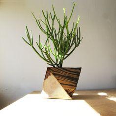 Cody Hoyt Sculptural Planters