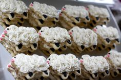 year of the sheep cookies