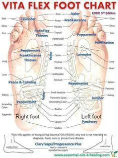 vita flex foot chart