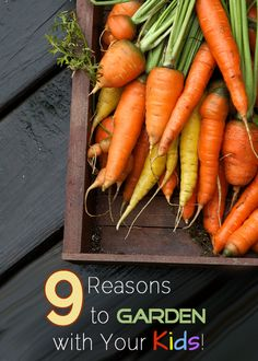 9 Reasons to Garden with Your Kids by Adventurous Moms