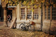 teenage dream, fall pictures, autumn leaves, bicycl, basket