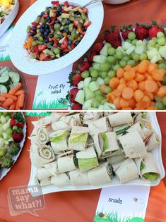 Bug-inspired party food (fruit fly salad and snails!)