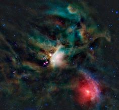Young Stars in the Rho Ophiuchi Cloud   Credit: NASA, JPL-Caltech, WISE Team