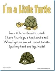 I'm a Little Turtle