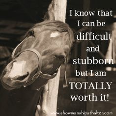anim, horse quotes, horses, total worth, funny quotes