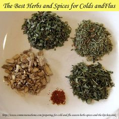 The Best Herbs and S