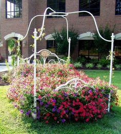 flower bed / garden