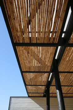 Possibly make a screen of bamboo stalks, wired together, to roll out on top of my arbor in the heat of the summer...?